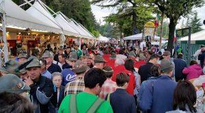Adunata Nazionale Alpini L'Aquila 16 maggio 2015 (1)
